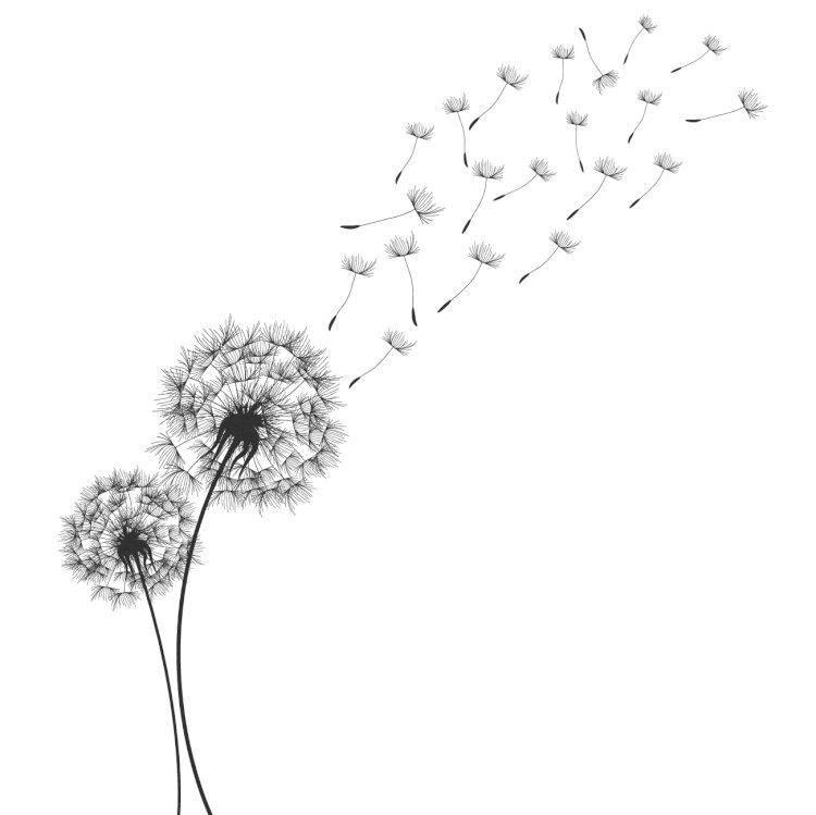 Ketika Angin Meniup Dandelion